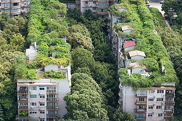 Begrünte Wohngebäude im chinesischen Chengdu